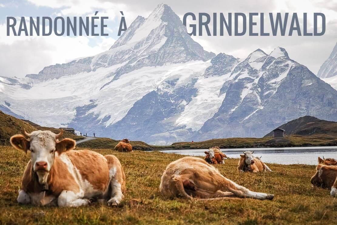Randonnée en Suisse à Grindelwald dans l'Oberland Bernois