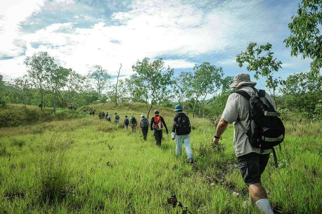 Bushwalking to Mt Diamond waterfall
