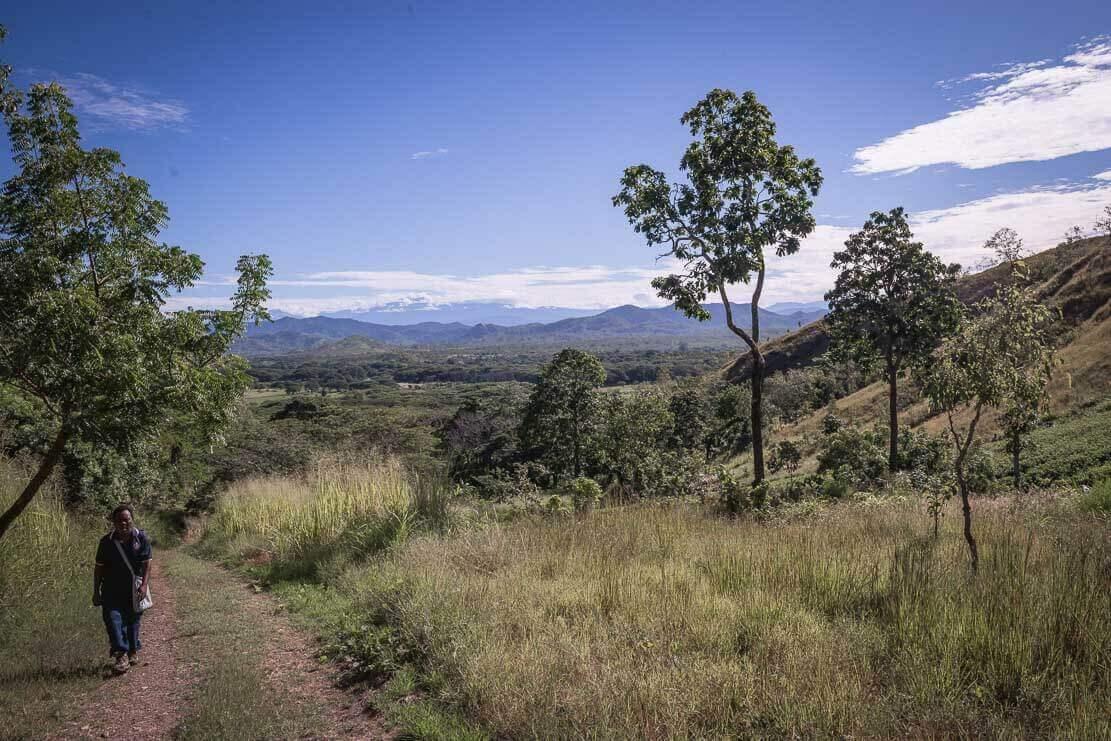 Bushwalking to Mt Erima lookout