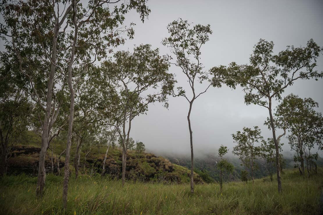 Bushwalking near Port Moresby to Bisianamu Rubber Plantation