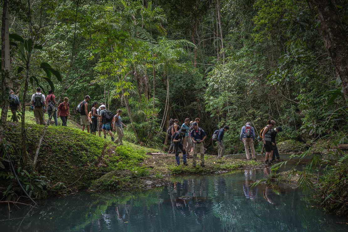 Hiking/Bushwalking in Papua New Guinea (PNG) - Varirata National Park