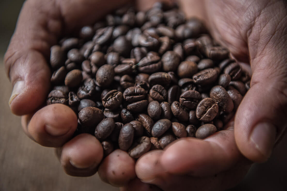 Liberica and robusta coffee beans in Malaysia