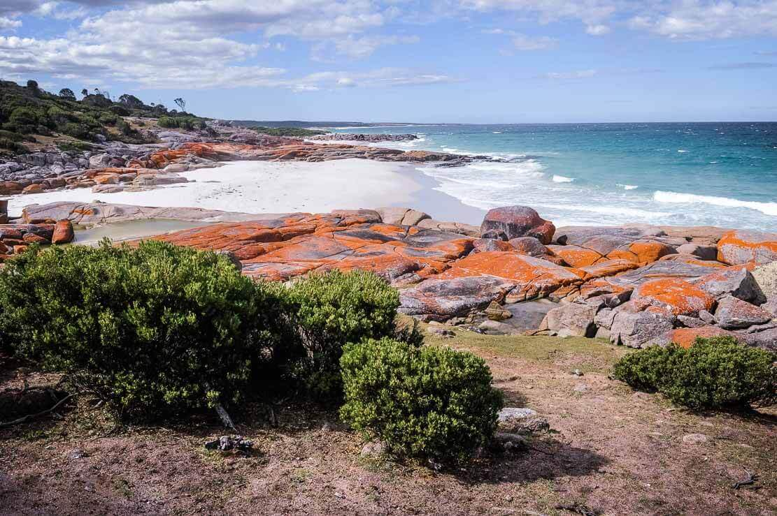 Camping on Bay of Fires in Tasmania