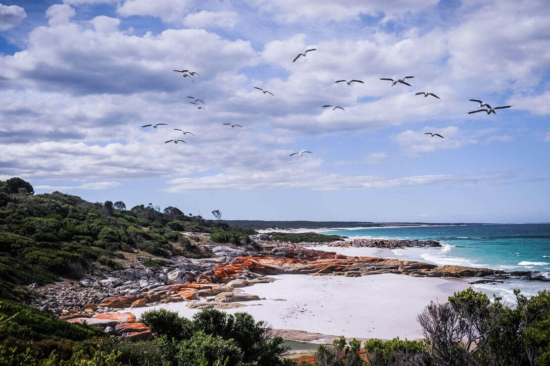 Deserted white sandy beaches and azure waters of Bay of Fires in Tasmania
