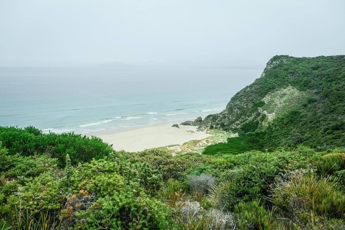 Bruny Island beaches on Cape Queen Elizabeth walk