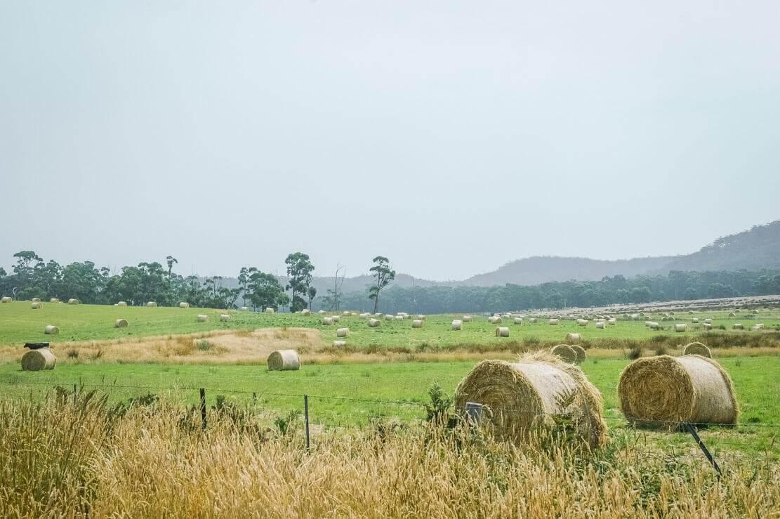 Landscape of Bruny Island in Tasmania