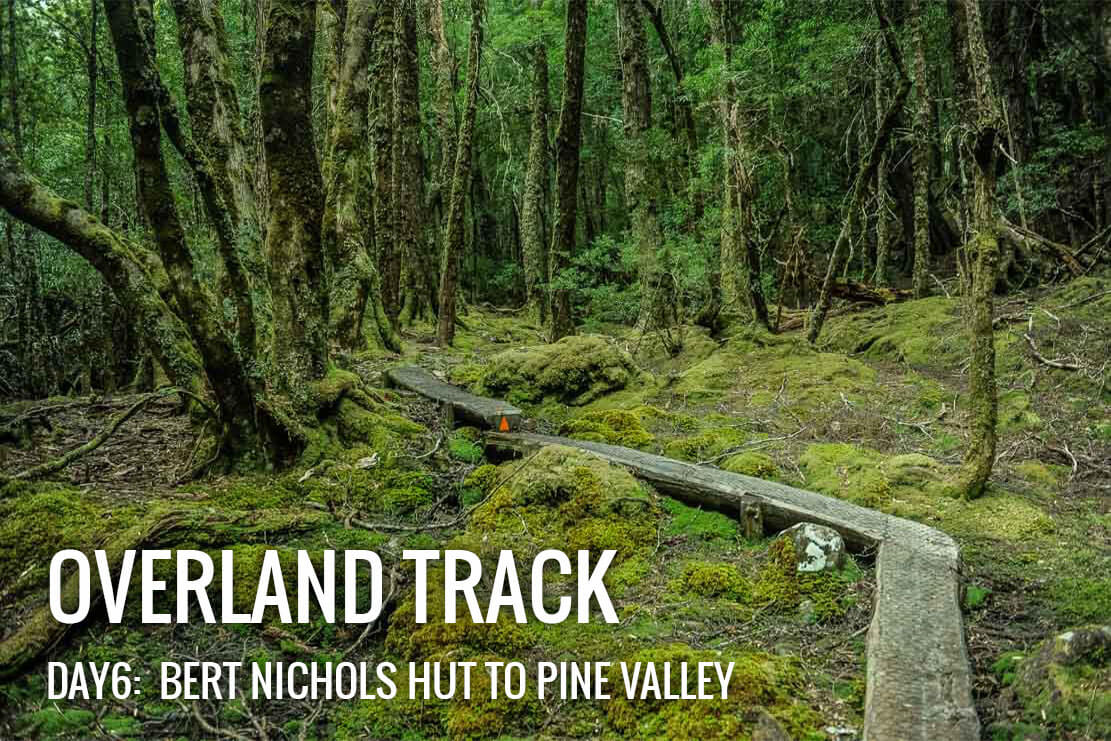 Walking from Bert Nichols Hut at Windy Ridge to Pine Valley Hut