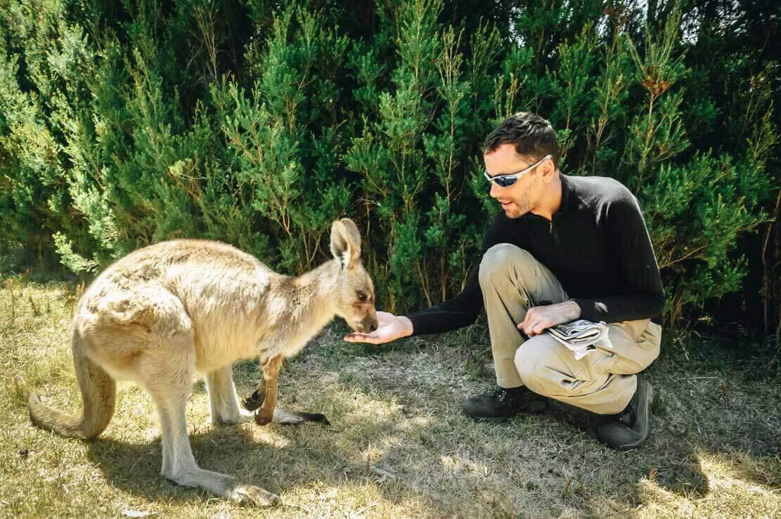 East Coast Natureworld near Bicheno in Tasmania