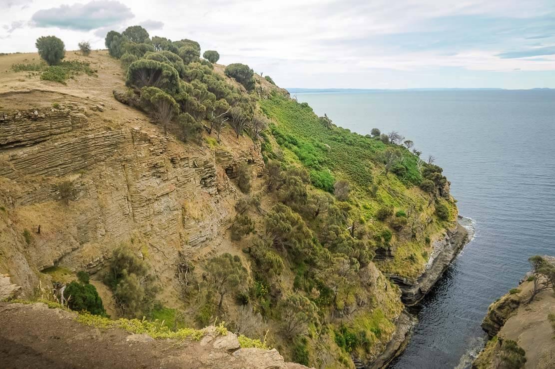 Fossil Cliffs on Maria Island in Tasmania