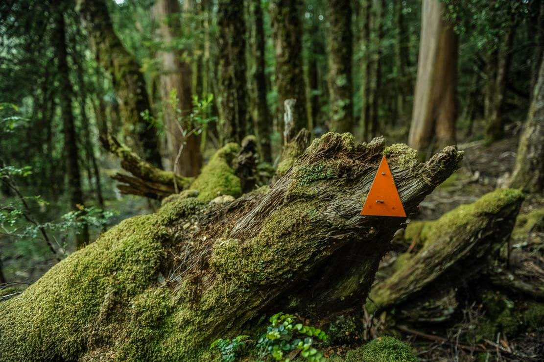 Hiking trail markers are not always visible