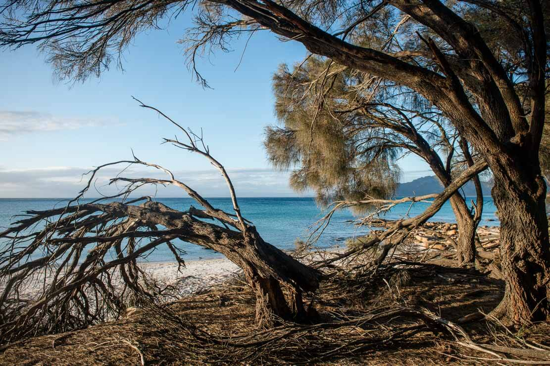 Cooks Beach in Freycinet National Park in Tasmania
